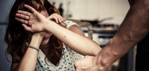 domestic violence partner visa application